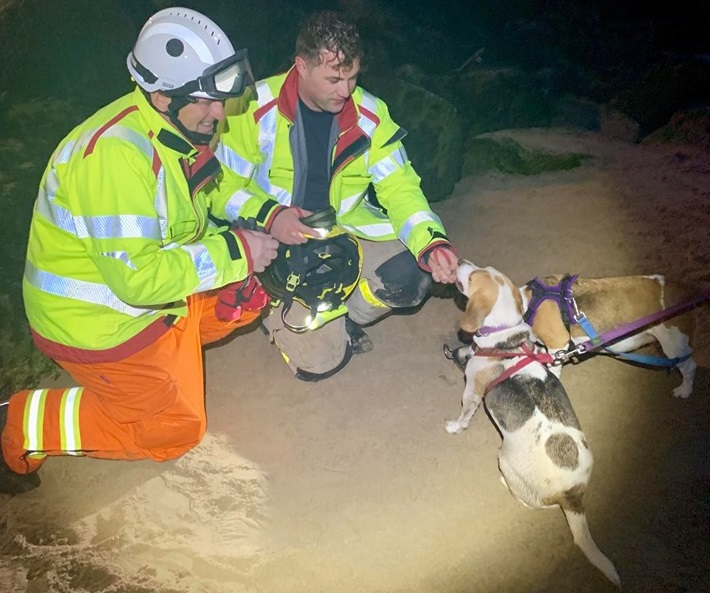 Dog trapped in rocks at New Brighton Marine Lake saved after big rescue operation