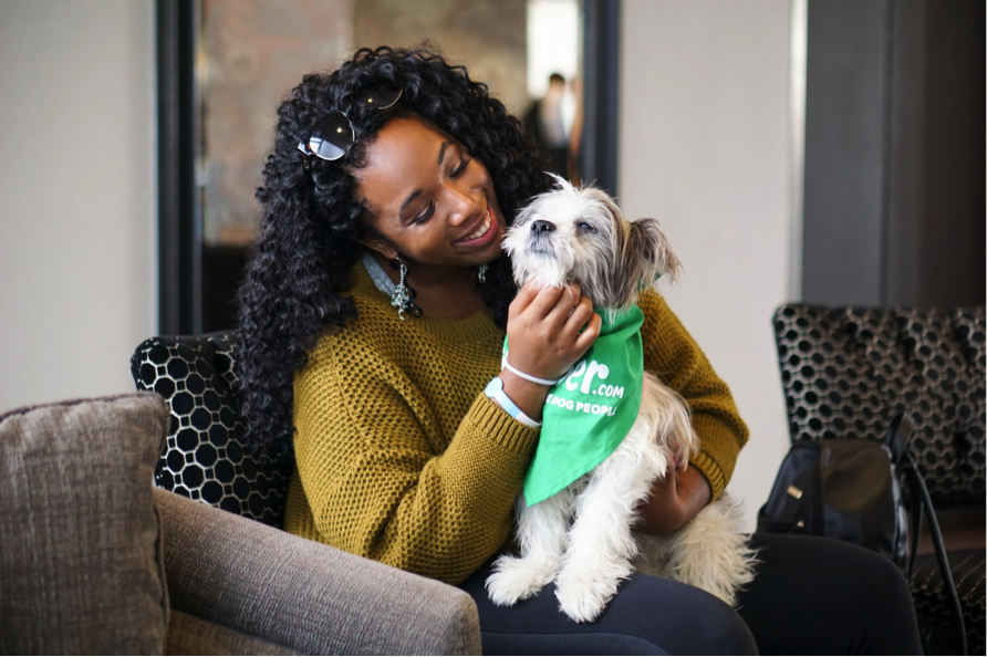 Search launched for the best dog-friendly pubs