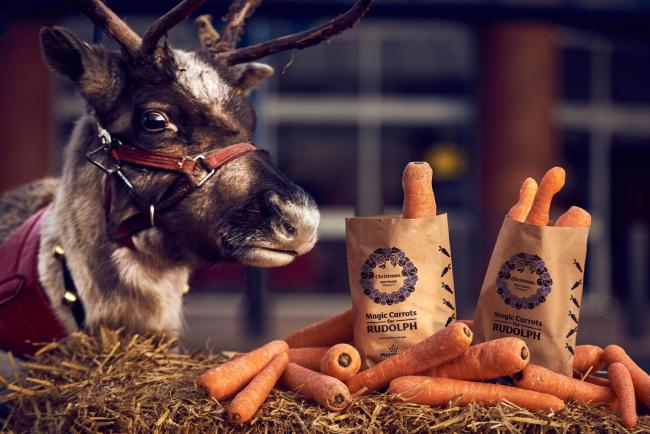 Morrisons is giving out FREE wonky carrots for Rudolph