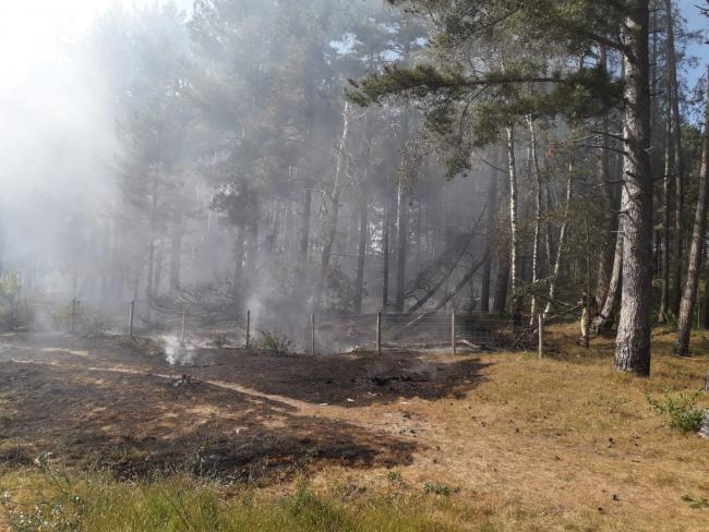 The Merseyside Fire and Rescue Service follows a large fire in Formby Pinewoods on Wednesday.