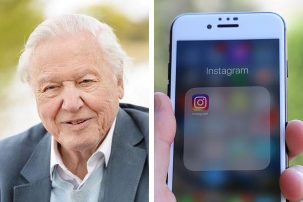 Sir David Attenborough explains why he has launched an Instagram account. Picture: PA Wire
