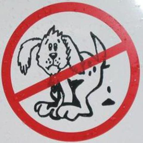 Revealed: Wirral's 'foulest' areas for dog mess