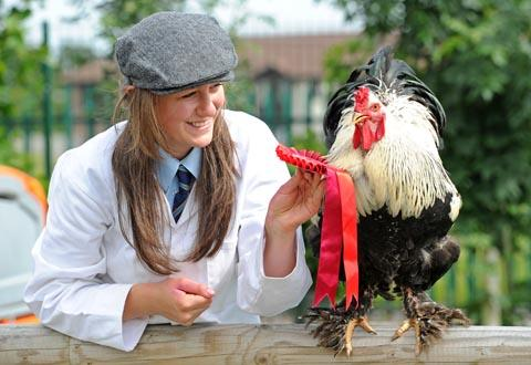 16 year old Sophie Tedesco with the prize rooster, Johnson at Woodchurch High School