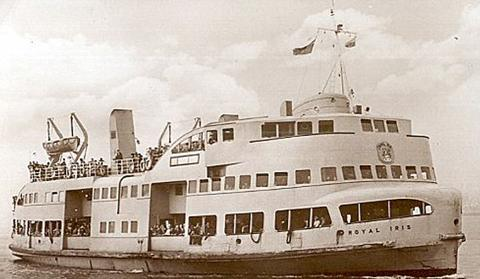 Royal Iris in heyday