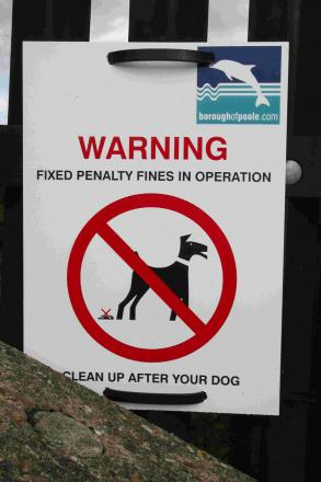 Council gets tough on dog fouling, fly-tippers and alleyway dumping