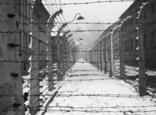 Today is Holocaust Memorial Day, marking the liberation of the Auschwitz-Birkenau concentration camp.