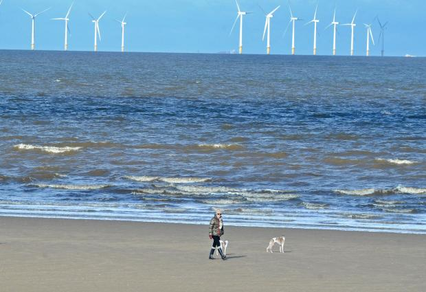 Wirral Globe: New Brighton could become Wirral's first 'dog free beach'
