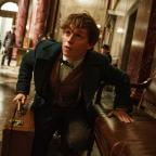 Wirral Globe: Eddie Redmayne unveils new trailer for Fantastic Beasts And Where To Find Them