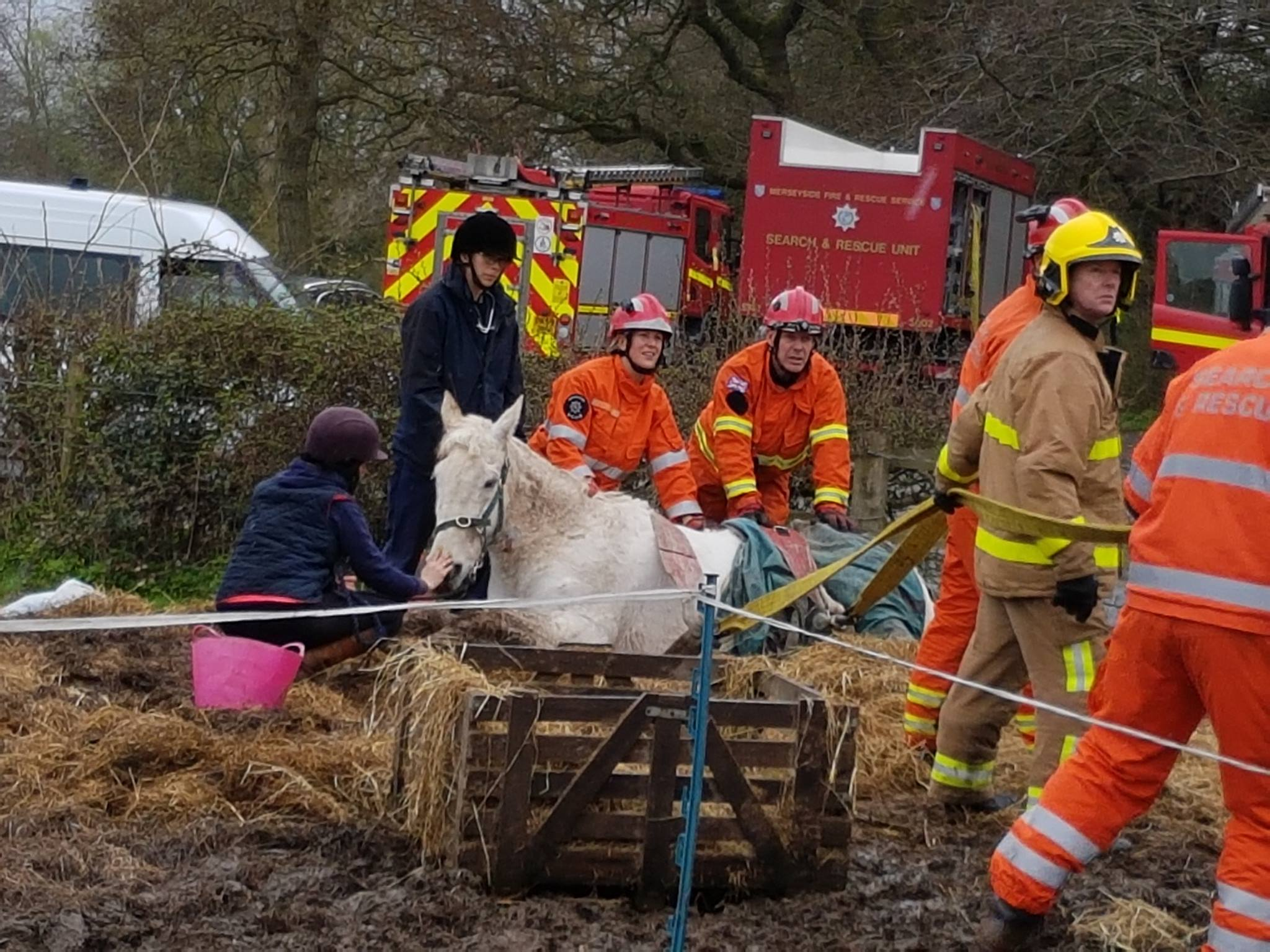Claudia receiving a helping hand from fire crews, vets and volunteers. (Picture: Horse Sense Wirral)