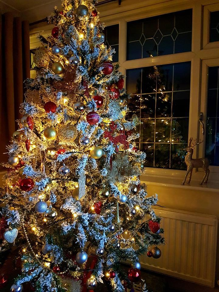 Best Christmas Trees.Gallery Wirral S Best Christmas Trees 2018 Wirral Globe