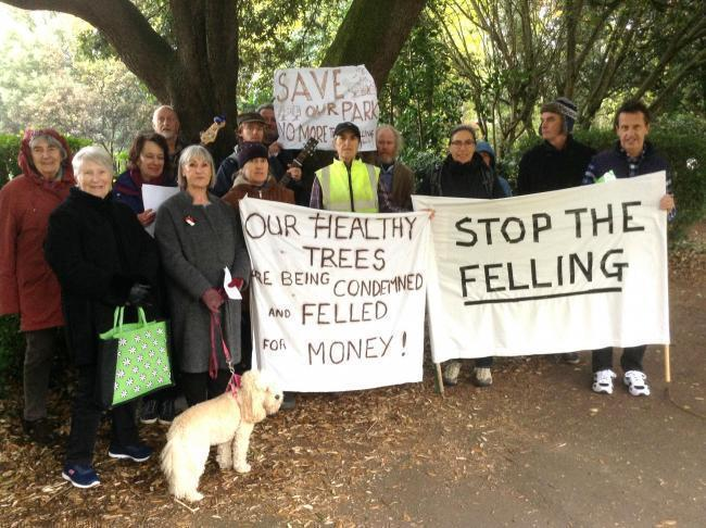 Campaigners in Ashton Park in November. Picture: Craig Manning